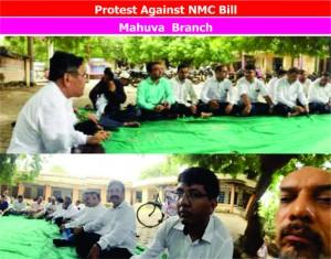 NMC photo21